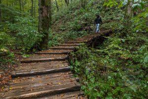 Plitvice Lakes Upper Lakes walkway in the rain