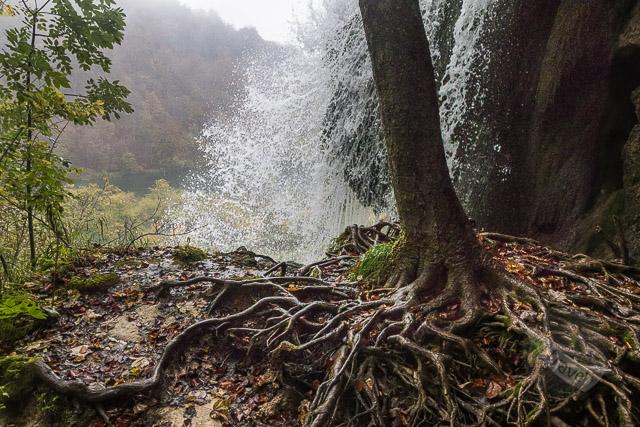 Lake Galovac falls viewpoint at Plitvice Lakes